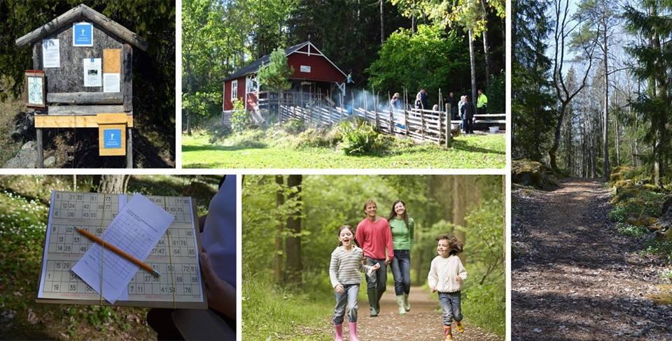 Söndagsutflykt och skogsbingo med Friluftsfrämjandet Långhundra
