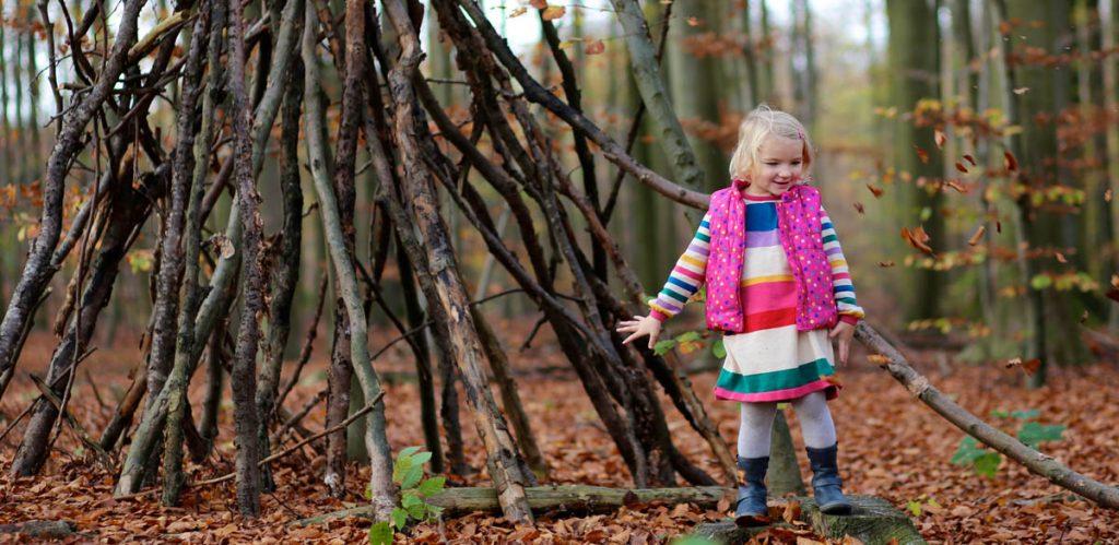 Aktiviteter i skogen