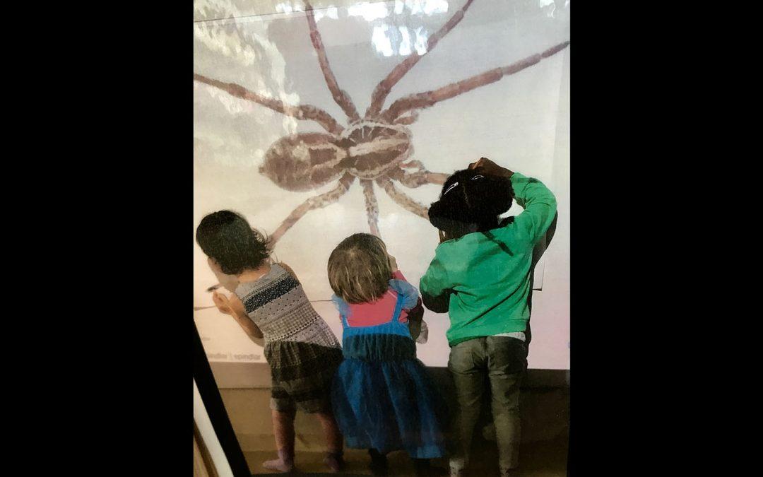 Barns röster om vär(L)den, fröbomber och en hållbar framtid i fokus!