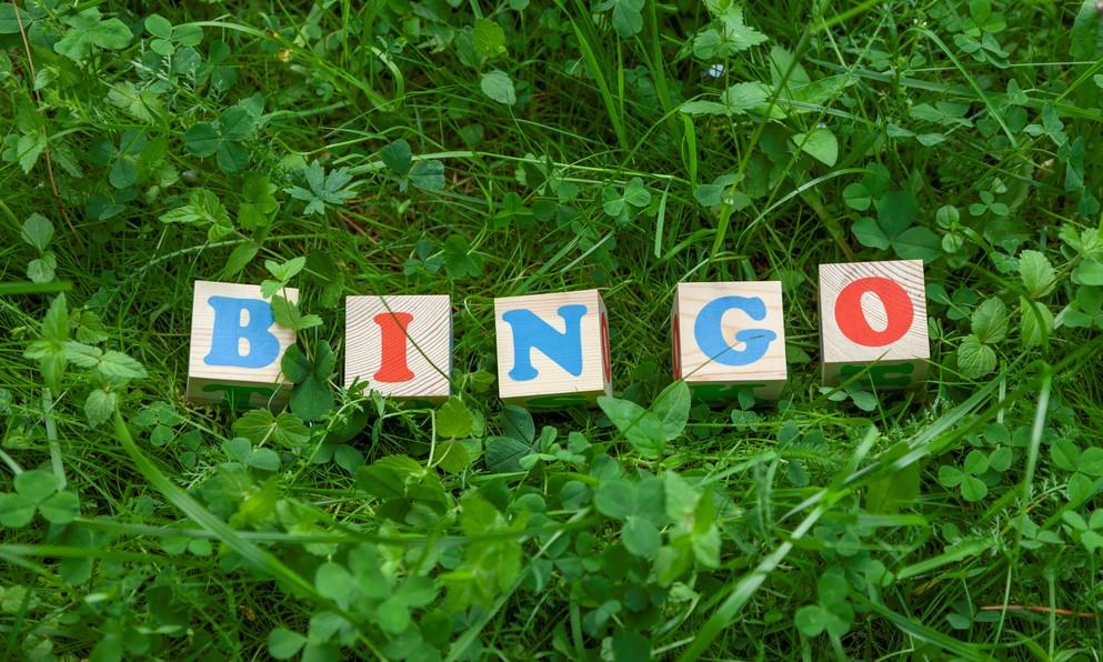 Bingo på Särstastugan