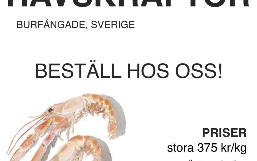 Svenska havskräftor hos Café hörnet!