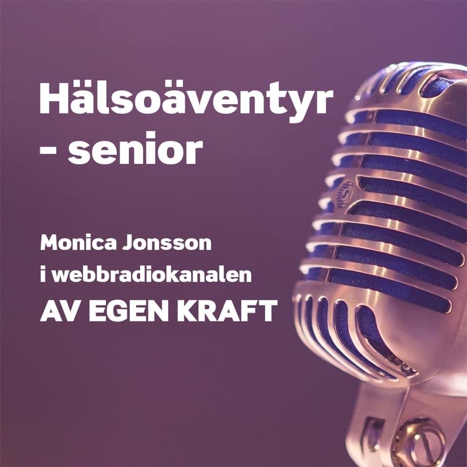 MJ Interaction, Monica Jonsson Hälsoäventyret